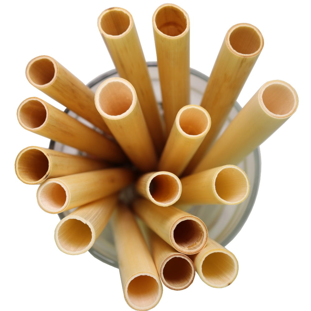 Large custom drinking straws from biodegradable reed